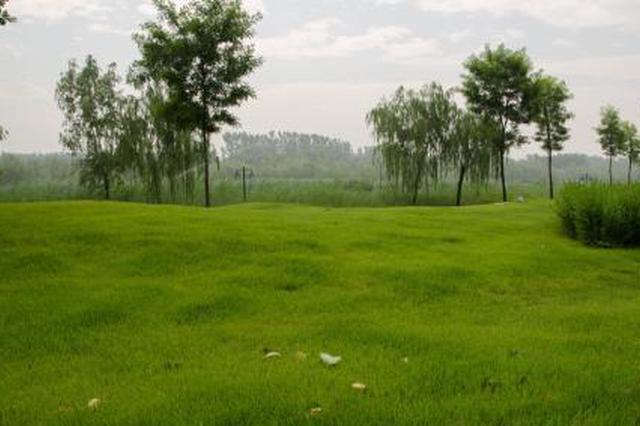 人均公园绿地面积 成都今年将增加0.12平方米