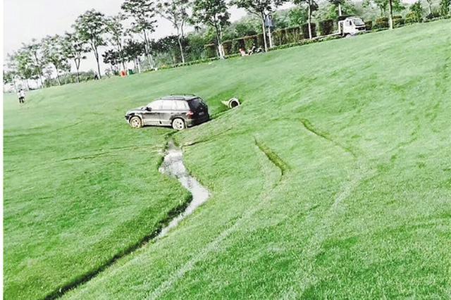 凌晨酒后驾车闯10万平米大草坪 肇事者因涉嫌寻衅滋事被刑拘