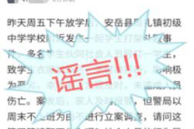 安岳警方称周末不上班不立案调查? 网民造谣被处罚