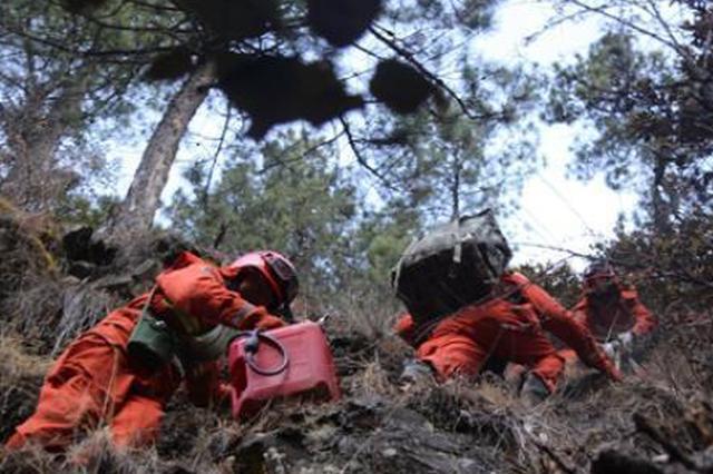 雅江2.16森林大火宣判:3人獲刑6年 22人補種樹苗近44萬株