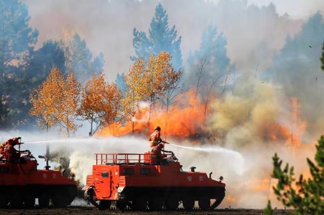今年前两月 四川森林火灾次数、受害面积明显下降