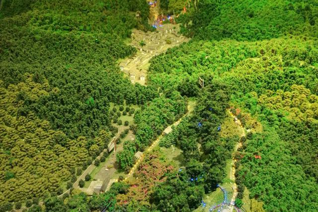 截至目前 四川已落地林草碳汇项目17个