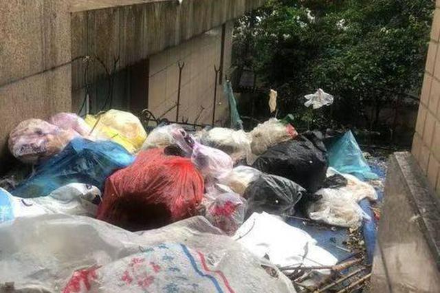 过分!高空扔垃圾雨棚惨变垃圾堆 二楼住户苦不堪言