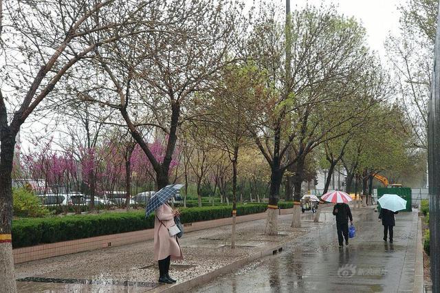 今年下半年来最强冷空气来袭 四川:问题不大