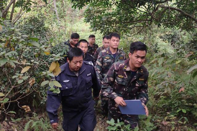 成都发布通告:林区边缘50米内 严禁一切野外用火