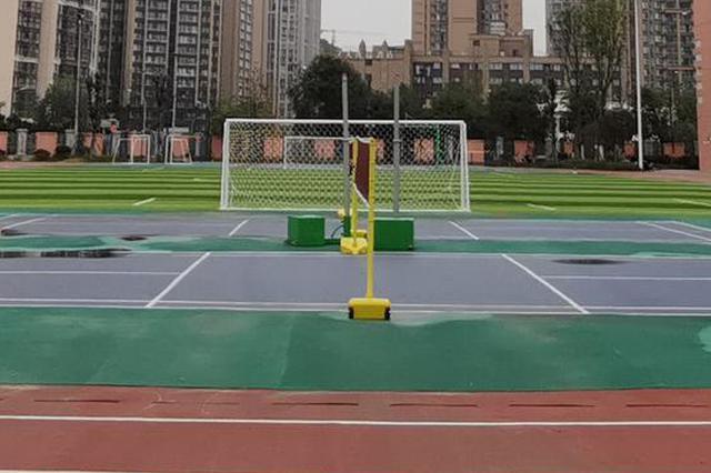 春节期间 乐山各地公共体育场馆免费开放