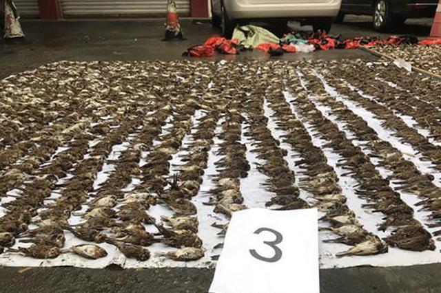 广安警方破获部督特大非法狩猎野生动物案 14人领刑