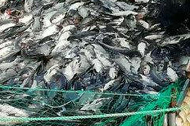 水库外包养鱼严重污染水质 检方提起公益诉讼