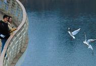 鹿溪河生态区成候鸟栖息地
