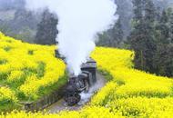 一列开往春天的小火车