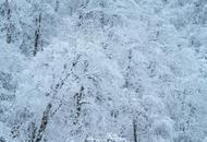 四川最美冬景实力出镜