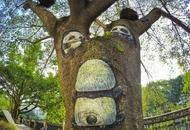 漫步欣赏3D树画好文艺