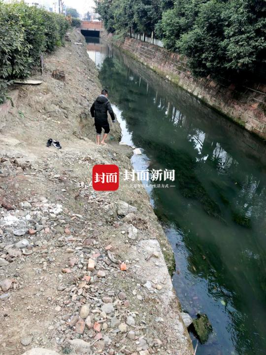 狗妈妈被困河中 成都陌生 路人联合救援接下来的事情暖心了