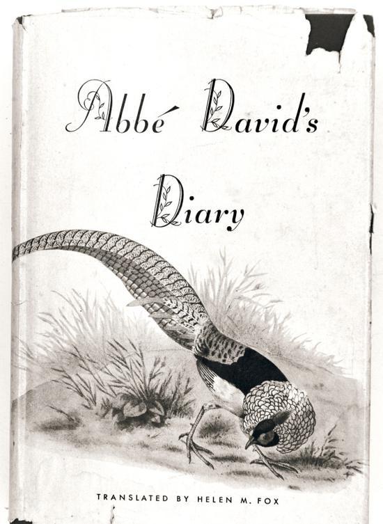 《戴维日记》封面