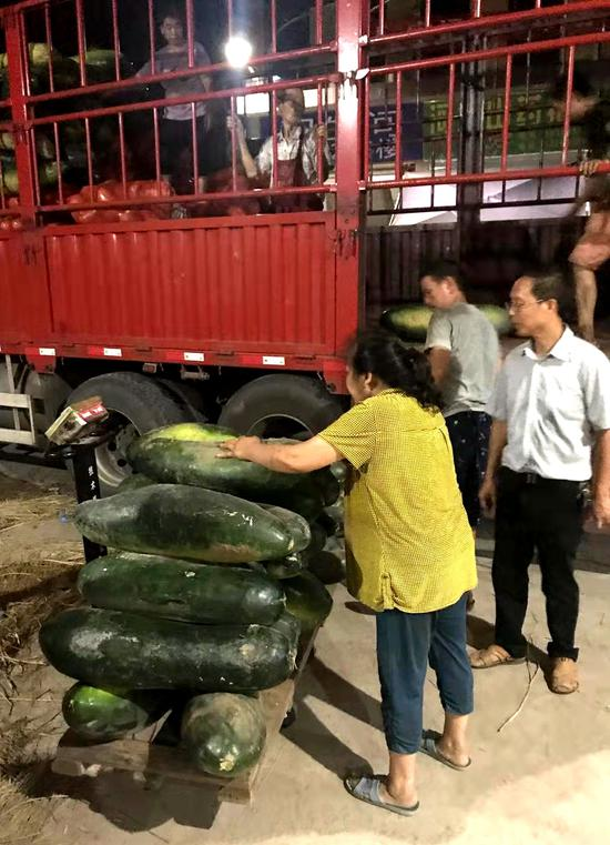吨宣汉蔬菜运往舟山市定海区