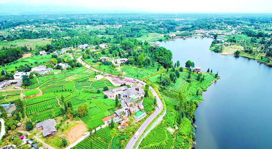 中国至美茶园绿道月亮湖段 名山区委宣传部供图