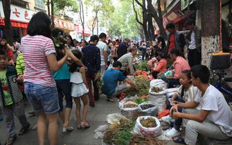 德昌:傈僳族端午节药市