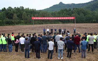 稻油作物农机装备技术田间日