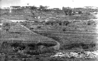 红军突破乐跃、半站营防线