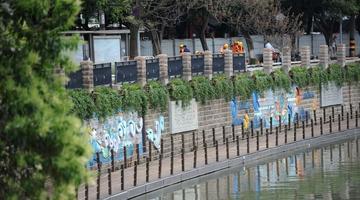 新成都!锦江绿道样板段月底与市民见面