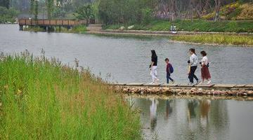来升级后的成都桂溪生态公园走走