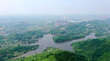 观景平台将遍布龙泉山城市森林公园
