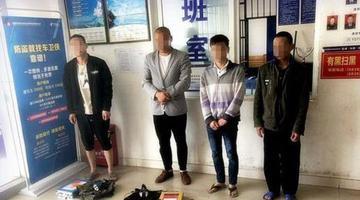 成都五男子捕捉黑斑蛙被刑拘