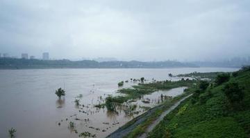 最新一轮洪峰过境广安 河边步道被淹没