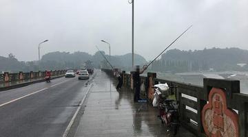 在桥上钓鱼 您觉得这合适吗