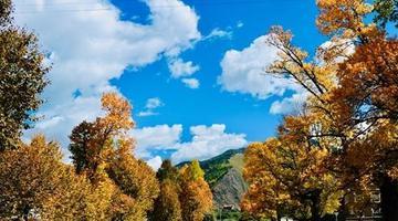 最壮美的甘孜秋景 一眼就会被迷住