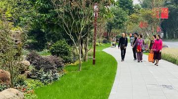 百年望江楼公园成为成都市民新打卡地