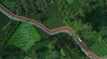 四川乡镇和建制村通硬化路比例超99.9%