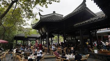 """成都人民公园百年""""鹤鸣""""茶社人气高"""