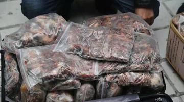 非法狩獵36萬余只野生鳥類 14人獲刑