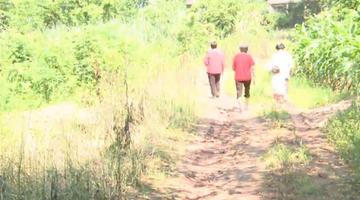 一条泥路困了10余户村民六七年