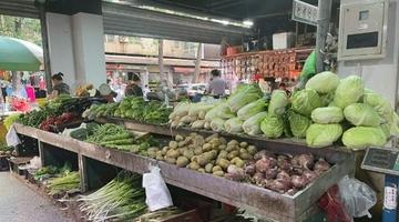 20元一斤的香菜 你觉得贵吗?