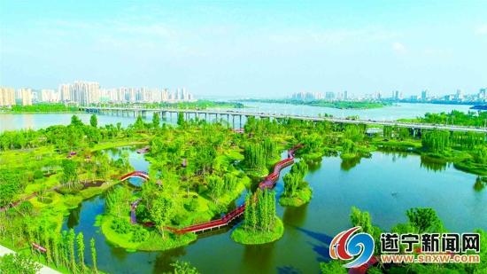 航拍九莲洲生态湿地公园