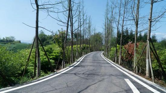 二期项目骑行道路 | 李坤宇 摄