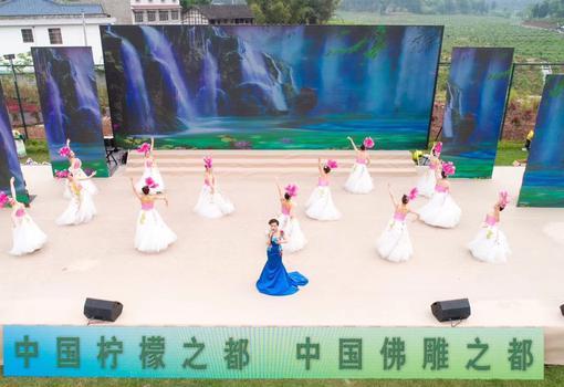 2019四川省第十届乡村文化旅游节