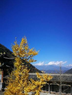冬日暖阳,到凉山洗肺洗眼睛吧