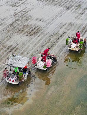 廣安鄰水:智能機械化生產助力春耕