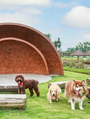全国首个超大型宠物公园来啦