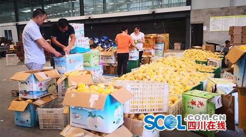 千吨安岳柠檬即将销往俄罗斯