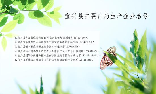 宝兴县主要山药生产企业名录(宝兴县融媒体中心供图)