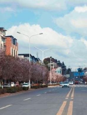 资阳城区春景如画 网红路成颜值担当