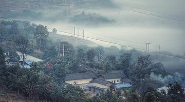 冬雾环绕米易 犹如仙境