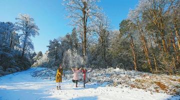 冬季到四川来看雪 雪景格外多姿多彩