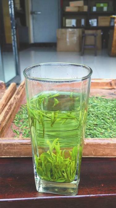 鲜叶制成干茶后,每斤卖1000元仍供不应求。