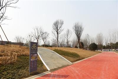 公园分离建设骑、行步道,打造生态景观