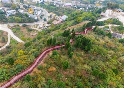 12月5日,位于龙泉山森林公园的钟家山步游道 张直 摄